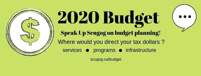 2020-Budget-web-graphic