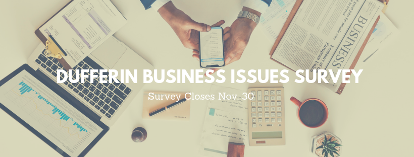 Dufferin Board of Trade Survey