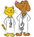 Cat & Dog Vets