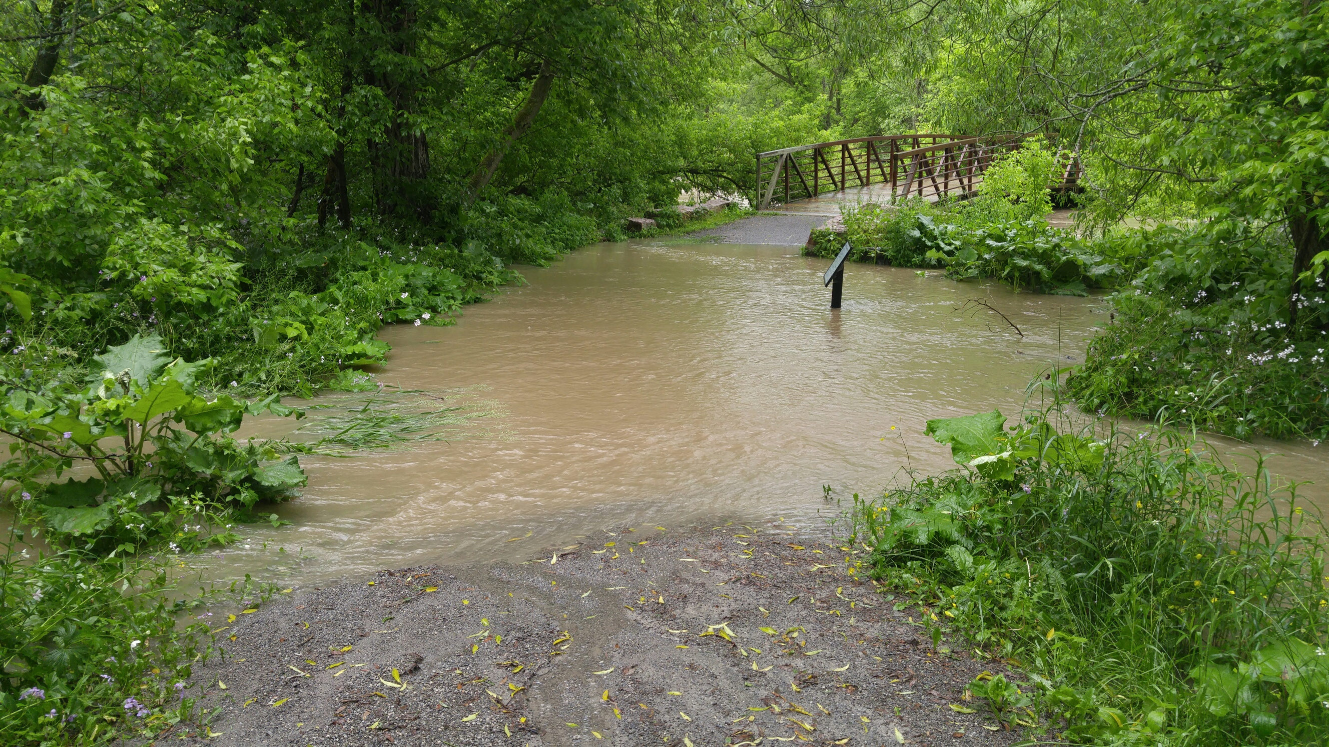 Flooding at Cobbledick Trail