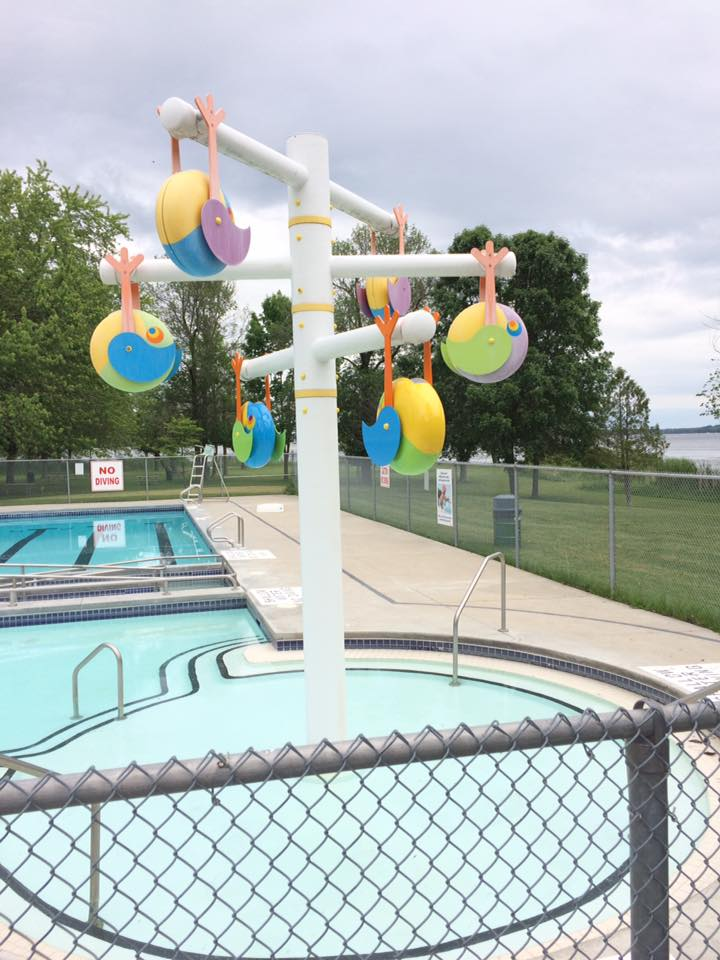 birdseye pool