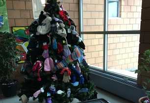 Christmas tree with hats, mitts, scarves and socks hanging on it