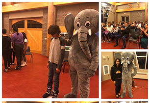 Students with the Elephant in the room